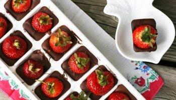 Cortando bolos com f rmas de ursinhos belle diva - Candy candy diva futura ...